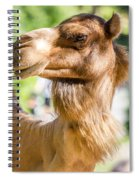 Camel Portrait Spiral Notebook