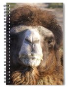 Camel Face Spiral Notebook