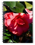 Camelia In The Shadows Spiral Notebook