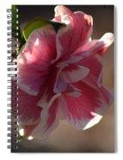 Camelia Sansaqua Spiral Notebook
