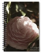 Camellia 2 Spiral Notebook