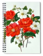 Camellia Adolf Audusson Spiral Notebook