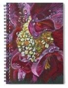 Camellia Rain Spiral Notebook