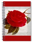 Camellia Spectacular Spiral Notebook