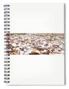 Camino Spiral Notebook