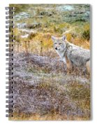 Camo Coyote Spiral Notebook