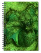 Camoflauged Octopus Spiral Notebook