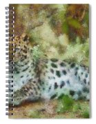 Camouflage Cat Spiral Notebook