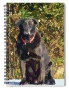 Camouflage Labrador - Black Dog - Retriever Spiral Notebook