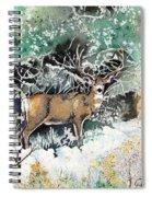 Camouflaged Mule Deer Buck In Winter Spiral Notebook