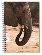 Camouflaged Elephant Spiral Notebook