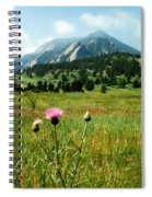 Chautauqua Wildflowers Boulder Spiral Notebook