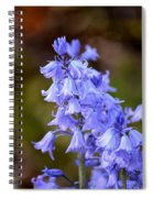 Campanula Spiral Notebook