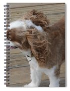 Can You Feel The Sea Breeze Spiral Notebook