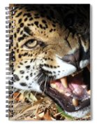 Can You Hear Me Now? Spiral Notebook