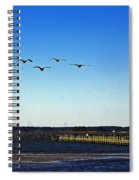 Canada Geese At Northside Park Spiral Notebook