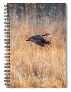 Canada Geese Spiral Notebook