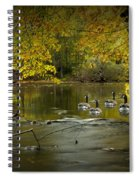 Canada Geese In Autumn Swimming On The Thornapple River Spiral Notebook