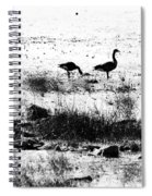 Canada Geese In Black And White Spiral Notebook