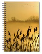 Canada Geese In Flight At Sunrise Spiral Notebook