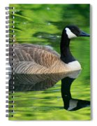Canada Goose On Green Pond Spiral Notebook