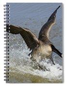 Canada Goose Touchdown Spiral Notebook