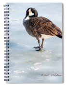 Canada Goose Web Prints Spiral Notebook