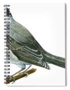 Canada Jay Spiral Notebook