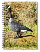 Canadaian Goose Spiral Notebook