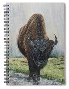 Canadian Bison Spiral Notebook