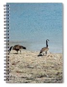 Canadian Geese 2 Spiral Notebook