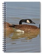 Canadian Geese Mates Spiral Notebook
