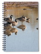 Canadian Geese Stop Over Spiral Notebook