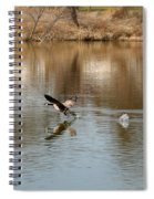 Canadian Geese Takeoff Spiral Notebook