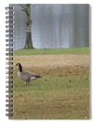 Canadian Geese Tourists Spiral Notebook