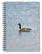 Canadian Goose 2 Spiral Notebook