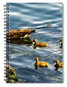 Canadian Goose And Goslings Spiral Notebook