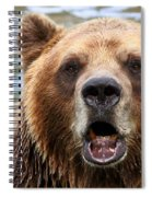 Canadian Grizzly Spiral Notebook