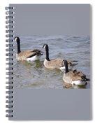 Canadian Trio Spiral Notebook