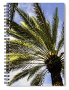 Canary Island Date Palm Spiral Notebook