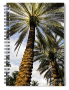 Canary Island Date Palms Spiral Notebook