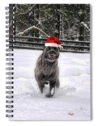Cane Corso Christmas Spiral Notebook