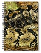 Canebrake Rattlesnake Spiral Notebook