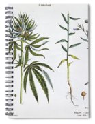 Cannabis And Flax Spiral Notebook