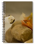 Cannibalism Is Sweet Spiral Notebook