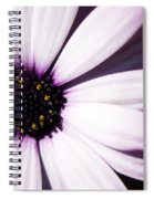 Cannington Roy Spiral Notebook