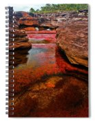 Cano Cristales Spiral Notebook