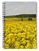 Canola Field Spiral Notebook