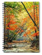 Canopy Of Color II Spiral Notebook