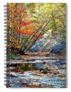 Canopy Of Color Iv Spiral Notebook
